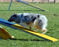 ZIA Agility, 4/21-22/12 - Pt1of4