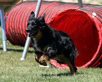ZIA Agility, 4/21-22/12 - Pt2of4